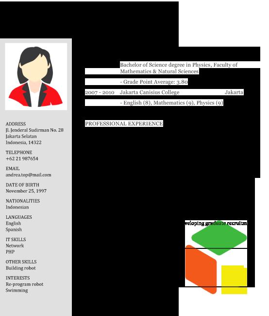 contoh template cv english terbaru