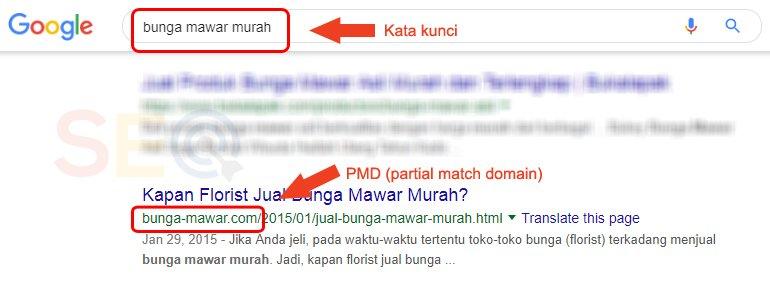 Nama dan usia domain faktor SEO PMD