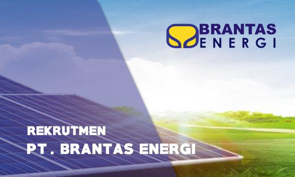 Rekrutmen pt brantas energi