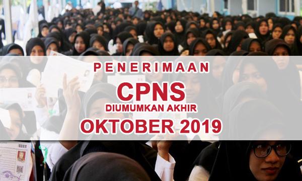 Rekrutmen CPNS Tahun 2019 diumumkan Minggu ke-4 Oktober 2019