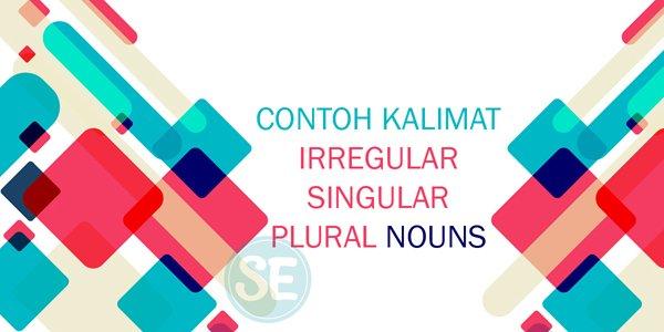 Contoh Kalimat Irregular Singular dan Plural Nouns