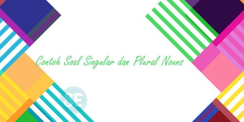 Contoh Soal Singular dan Plural Nouns